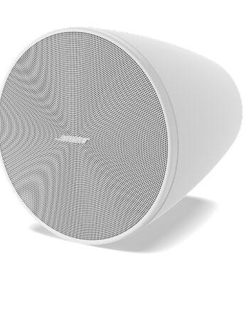 Bose DesignMax DM5P